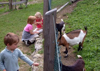 ...und die Tiere machen die Doagl Alm auch für Kinder zum unvergesslichen Erlebnis.